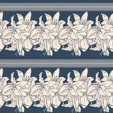 Seamless pattern with  lilies Stock Images