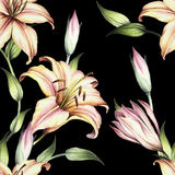 Seamless pattern with lilies. Hand draw watercolor illustration Stock Photography