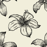 Seamless pattern with lilies . Vector freehand drawing Royalty Free Stock Photo
