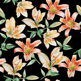 Seamless pattern with lilies. Stock Photos