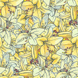 Seamless pattern with  lilies Royalty Free Stock Photography
