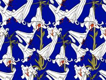 Seamless pattern with lily flowers. Beautiful botanical theme. royalty free illustration