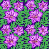 Seamless pattern lily flowers and leaves Stock Photos