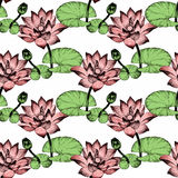 Seamless pattern with Lily flowers, watercolor illustration Royalty Free Stock Images