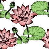 Seamless pattern with Lily flowers, watercolor illustration Stock Images