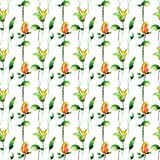 Seamless pattern with Lily and Rose flowers. Watercolor illustration Royalty Free Stock Photography