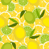 Seamless pattern with lime and lemon. Vector illustration Stock Photography