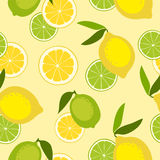 Seamless pattern with lime and lemon. Vector illustration Stock Photos