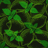Seamless pattern with limes and mint. Stock Photography