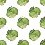 Seamless pattern with limes Royalty Free Stock Photos
