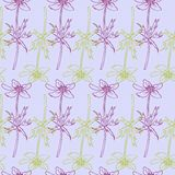 Seamless pattern with line drawing herbs Royalty Free Stock Images