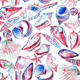 Seamless pattern with line drawing shells Royalty Free Stock Images