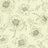 Seamless pattern line flowers peony, light green background. Peonies monochrome. Seamless pattern green flowers peony on a light green background. Peonies Stock Photos