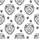 Seamless pattern with lion head Stock Image