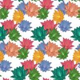 Seamless Pattern Lotus Royalty Free Stock Photography