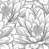 Seamless pattern with lotus flowers. Stock Photo