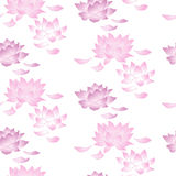 Seamless pattern with lotus flowers Stock Photo