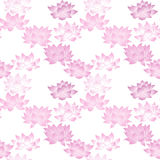 Seamless pattern with lotus flowers Royalty Free Stock Photos