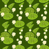 Seamless pattern with lotus Stock Photo