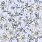 Seamless pattern lovely flower anemone hand drawn vector illustration