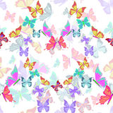 Seamless pattern lovely multicolored butterflies fly in the form Stock Image