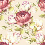 Seamless pattern with lush roses. Hand draw watercolor illustration. Stock Image