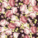 Seamless pattern with lush roses. Hand draw watercolor illustration. Royalty Free Stock Photo