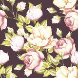 Seamless pattern with lush roses.Hand draw watercolor illustration. Royalty Free Stock Images