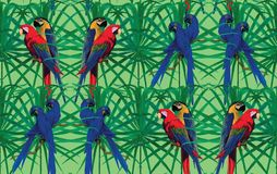 Seamless pattern with macaw parrots sitting on Royalty Free Stock Image