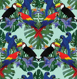 Seamless pattern with macaw parrots and toucans. Hand drawn vector ornament Stock Images