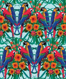 Seamless pattern with macaws, palm leaves and flowers. Royalty Free Stock Photos