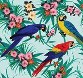 Seamless pattern with macaws sitting on branches. Stock Images