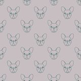 Seamless pattern made of french bulldog head Stock Photo