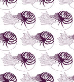Seamless pattern made of Nautilus Stock Photo