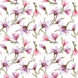 Seamless pattern made of pink magnolia flowers on a branch on white background. Watercolor painting. Hand painted. Seamless pattern made of pink magnolia Stock Images