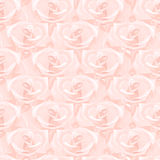 Seamless pattern made from roses. Seamless pattern made from pink roses Royalty Free Stock Photos