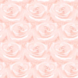 Seamless pattern made from roses. Seamless pattern made from pink roses Stock Photos