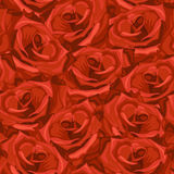 Seamless pattern made from roses. Seamless pattern made from red roses Royalty Free Stock Photos
