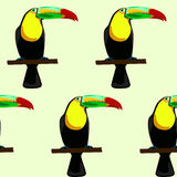 Seamless pattern. Made of toucans Stock Photography