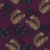 Seamless Pattern made from tropical Palm Leaves. Can be used as background or wallpaper Stock Photography