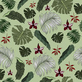 Seamless Pattern made from tropical Palm Leaves Royalty Free Stock Image