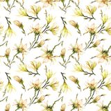 Seamless pattern made of yellow magnolia flowers on a branch on white background. Watercolor painting. Hand painted. Seamless pattern made of yellow magnolia Stock Image