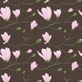 Seamless pattern with magnolia flowers Stock Photo