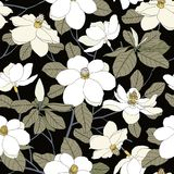 Seamless pattern with magnolia flowers and leaves on black backg Stock Photography