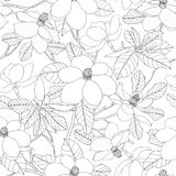 Seamless pattern with magnolia flowers and leaves. Floral vector Royalty Free Stock Image