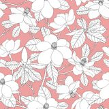 Seamless pattern with magnolia flowers and leaves on pink backgr Stock Photo