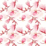 Seamless  pattern of magnolia flowers. Endless texture for your design Royalty Free Stock Photography