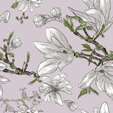 Seamless pattern with magnolia flowers Royalty Free Stock Image