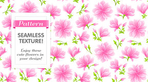 Seamless Pattern with Magnolia Stock Photography