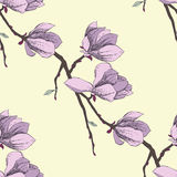 Seamless pattern with magnolia_2-02 Royalty Free Stock Image